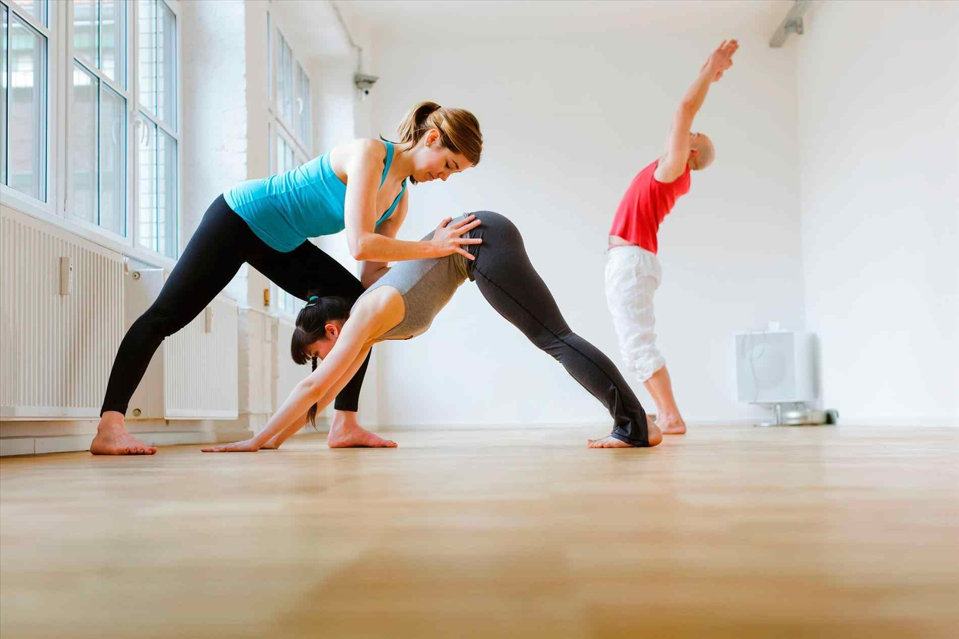 Therapeutic Yoga TTC - Inner Seed